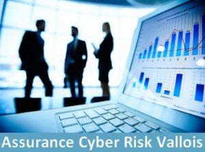 assurance cyber risks