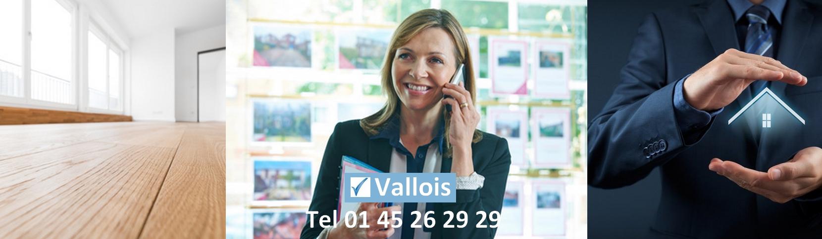 Comment souscrire une garantie financière agent immobilier ?