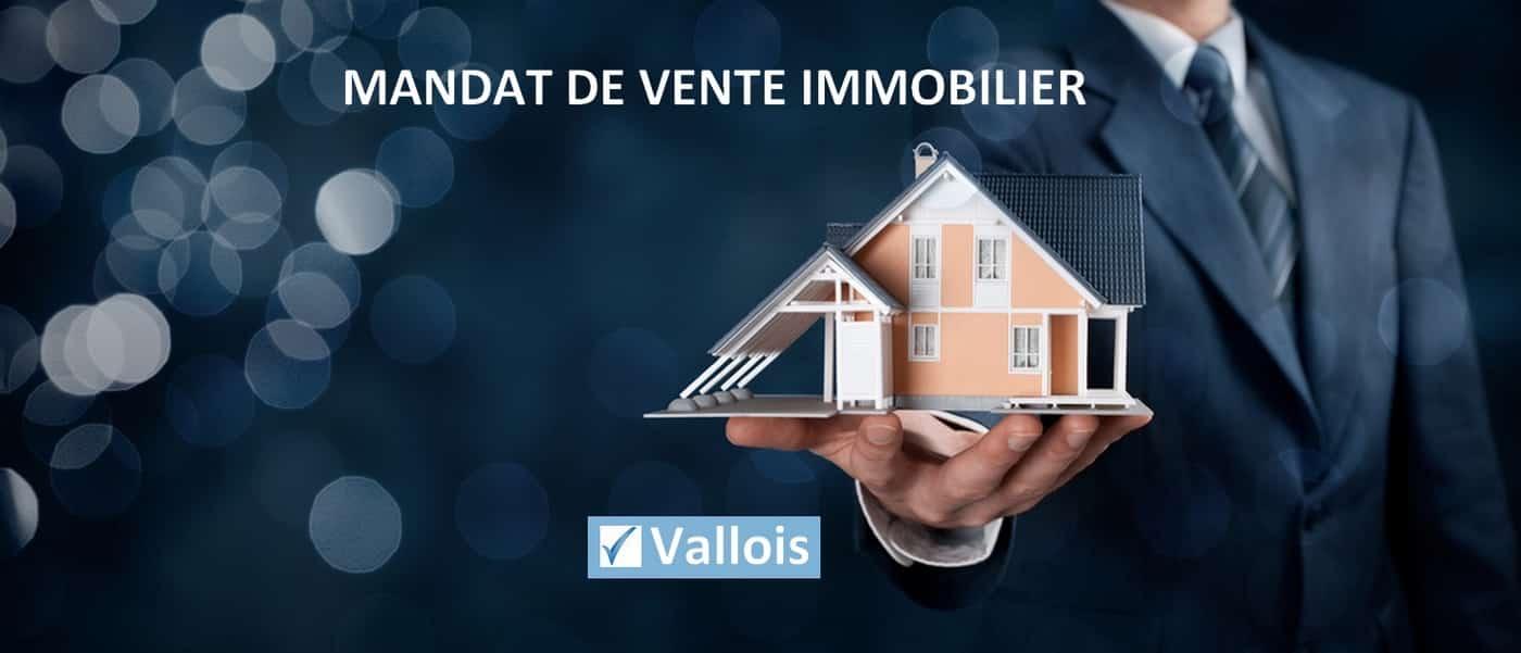 Qu'est ce qu'un mandat de vente en immobilier ?