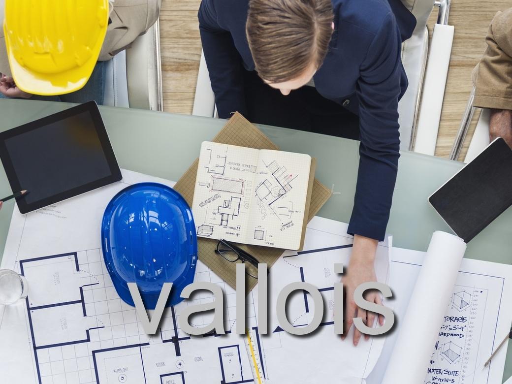 Quelles sont les particularités du métier de promoteur immobilier ?
