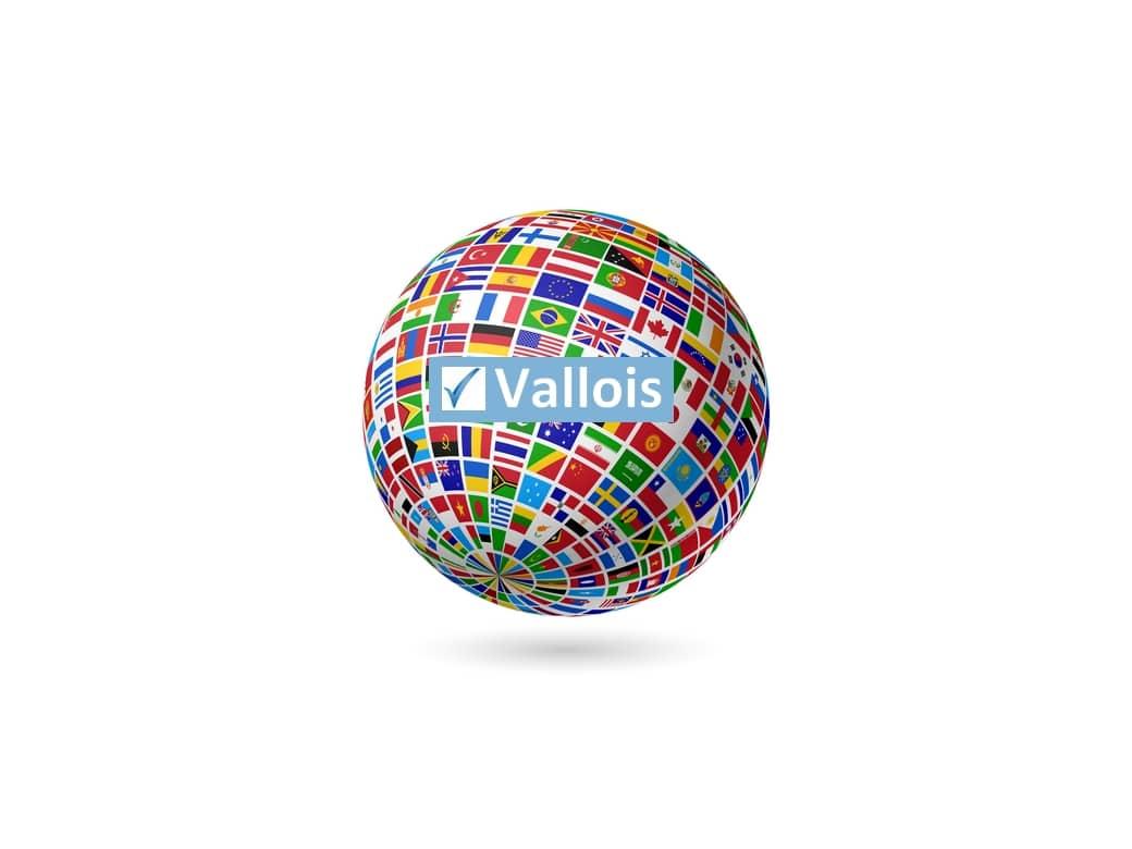 Comment souscrire une mutuelle pour une entreprise étrangère ?