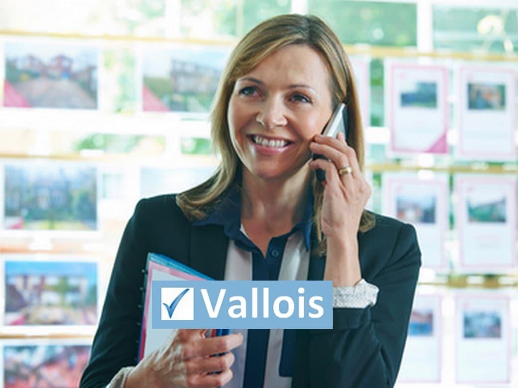 Quel statut faut il choisir pour une agence immobilière ?